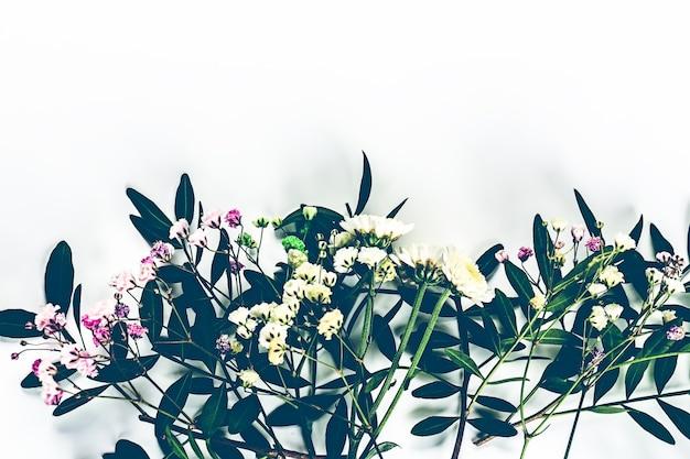 Herbarium van wilde bloemen met groene twijgen uitzicht van bovenaf botanische bloem achtergrond
