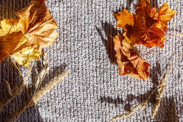 Herfst achtergrond. gedroogde oranje herfstbladeren en planten liggend op een witte gebreide trui. bovenaanzicht plat lag kopieerruimte. dankzeggingsbanner. hygge stemming koud weer concept. hallo herfst.