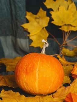 Herfst achtergrond met droge bladeren en pompoenen voor thanksgiving