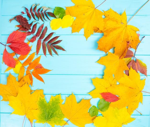 Herfst achtergrond met gele, rode en groene bladeren op blauwe houten bureau met kopie ruimte.