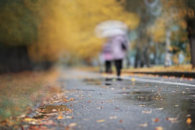 Herfst achtergrond regen in het park gedurende de dag