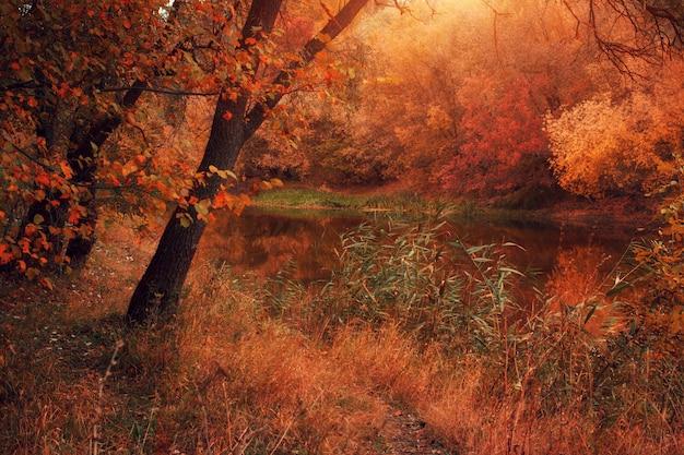 Herfst avond landschap met rivier