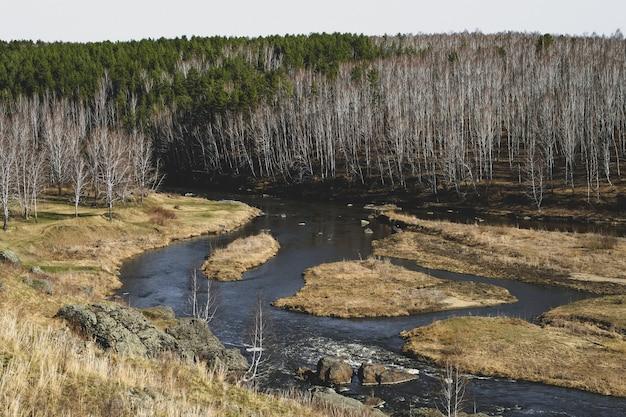 Herfst berg rivier stroom landschap. bergrivier herfst uitzicht. herfst berg rivier panorama.