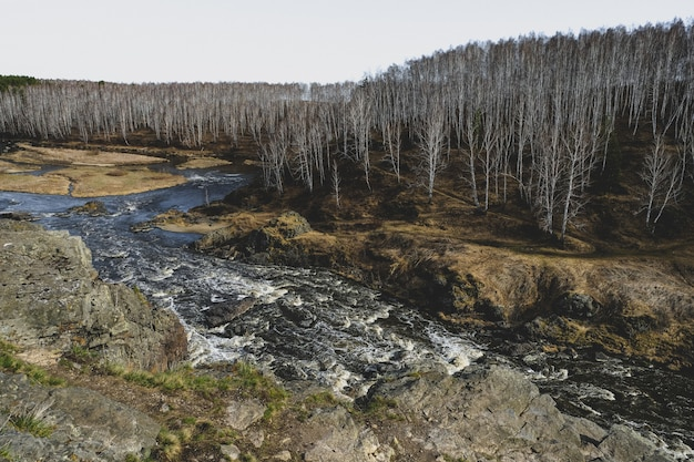 Herfst berg rivier stroom landschap.