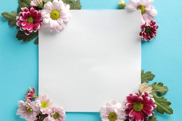 Herfst bloemen chrysant wit leeg voor inscriptie op een trendy blauwe achtergrond. bovenaanzicht