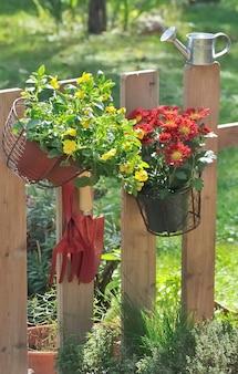 Herfst bloemen en hulpmiddelen