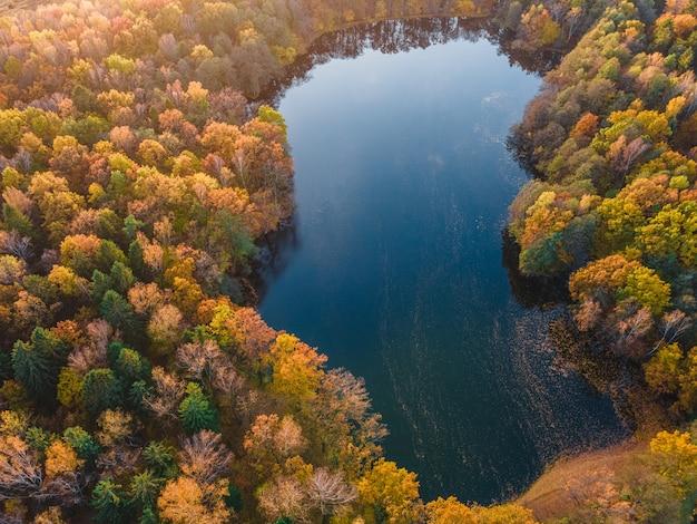 Herfst bos met luchtfoto drone uitzicht op het meer. bomen met kleurrijke oranje, rode, gele en groene bladeren