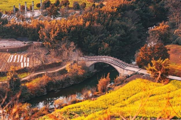 Herfst bos met oude brug