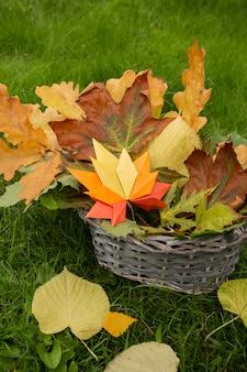 Herfst concept achtergrond traditionele papieren ambachtelijke handgemaakte origami gevallen esdoorn bladeren natuur kleurrijke backround afbeelding perfect voor seizoensgebonden gebruik groen gras