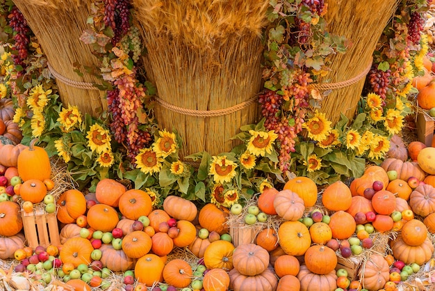 Herfst concept met seizoensgebonden groenten en fruit. herfst achtergrond van seizoensgroenten op het hooi.