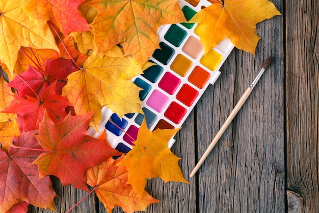 Herfst creatieve kunst schilderij achtergrond met potloden en esdoorn bladeren