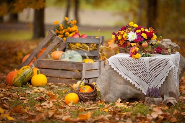 Herfst decor in de tuin in rustieke stijl. pompoenen die in houten doos op de herfst liggen. herfst tijd. thanksgiving day.
