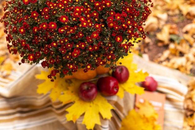 Herfst decoratie met bloemen, esdoorn bladeren, rode appels, pompoen, deken en oude boeken