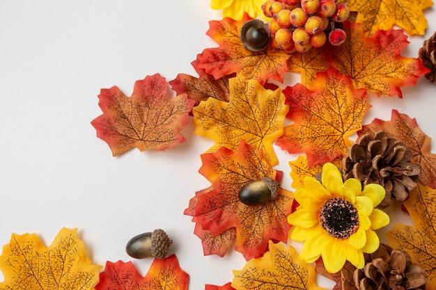 Herfst elementen op witte achtergrond