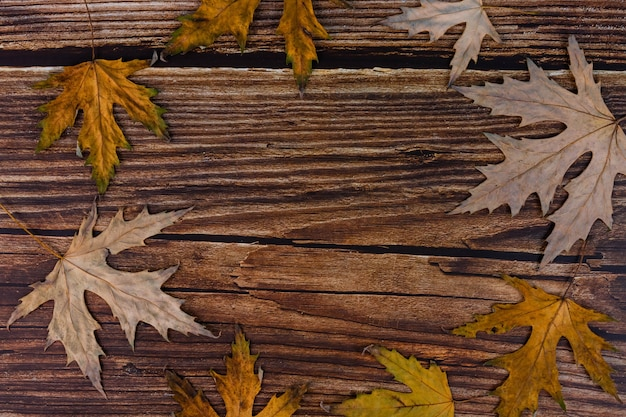 Herfst, esdoorn, droge, gele bladeren op een oude houten achtergrond met kopie ruimte.
