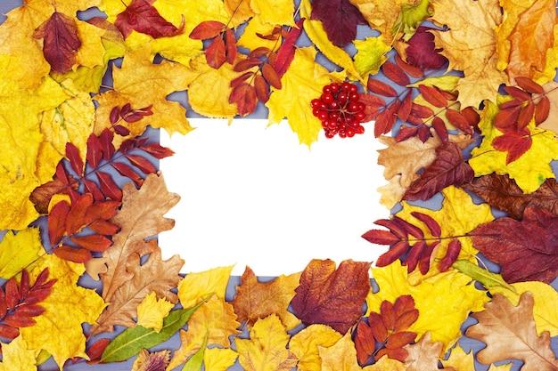 Herfst frame achtergrond herfst seizoen plat lag compositie met ruimte voor tekst