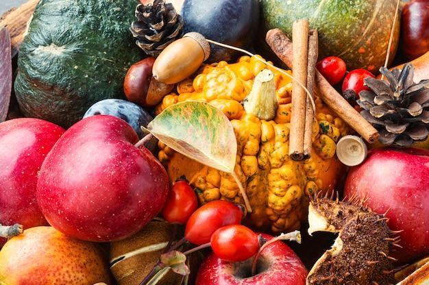 Herfst fruit