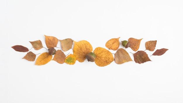 Herfst gedroogde bladeren en eikel die strook vormen
