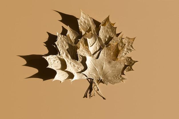 Herfst gouden mergelbladeren op beige, plat gelegd