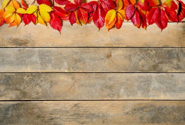 Herfst heldere geel-rode bladeren op een houten ruimte.