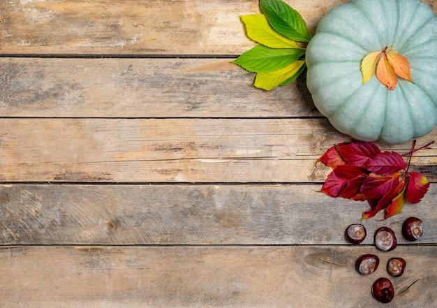 Herfst hout met geel-rood en groen blad, pompoen en kastanje.