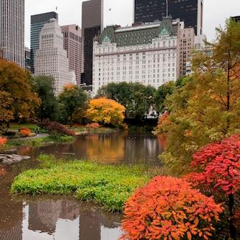 Herfst in central park in manhattan, new york city, verenigde staten