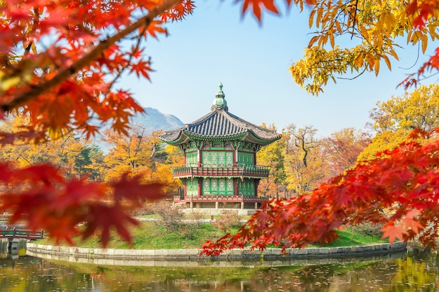 Herfst in gyeongbukgung palace, korea.