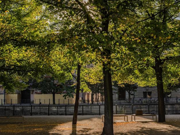 Herfst in het centrum van berlijn, het park lustgarten op het museumeiland