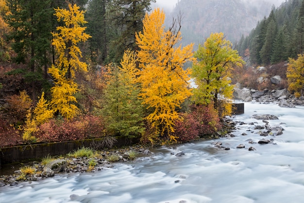 Herfst in leavenworth met rivierstroom en mist