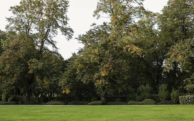 Herfst in leeds hyde park
