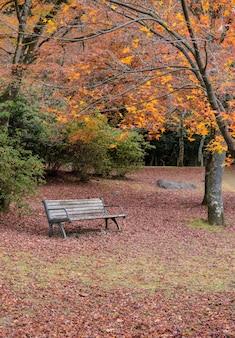 Herfst in park met houten bank en gevallen rode esdoornbladeren