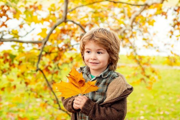 Herfst kinderportret. schattig gelukkig kind dat de gevallen bladeren vangt, speelt in het herfstpark.