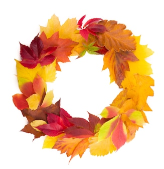 Herfst krans van droge gekleurde bladeren en rowan bessen geïsoleerd. plat leggen.