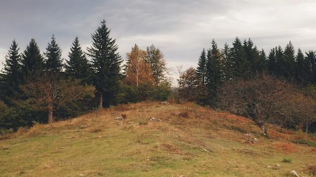 Herfst landschap bij berg bos antenne