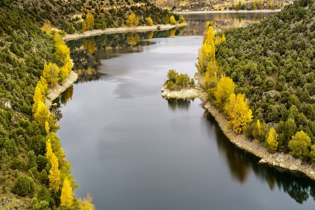 Herfst landschap, canyoned rivier met groene, gele bomen. hoces duraton river. spanje.