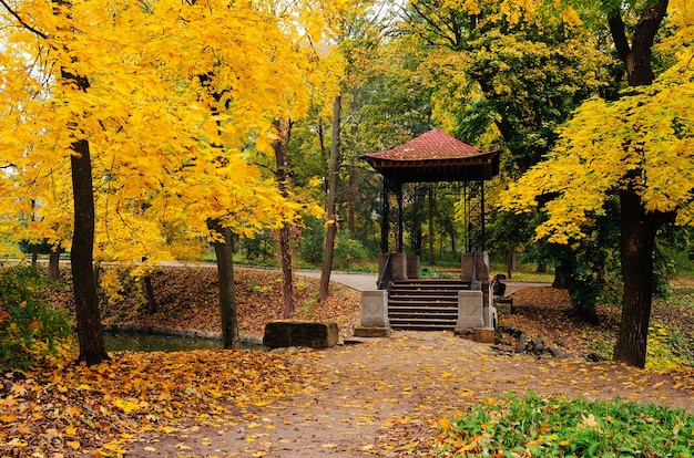 Herfst landschap in een park met gazebo. bewolkte dag. maples met gele bladeren