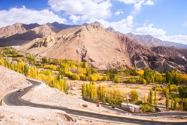 Herfst landschap in ladakh regio, india. vallei met bomen en bergenachtergrond in daling.