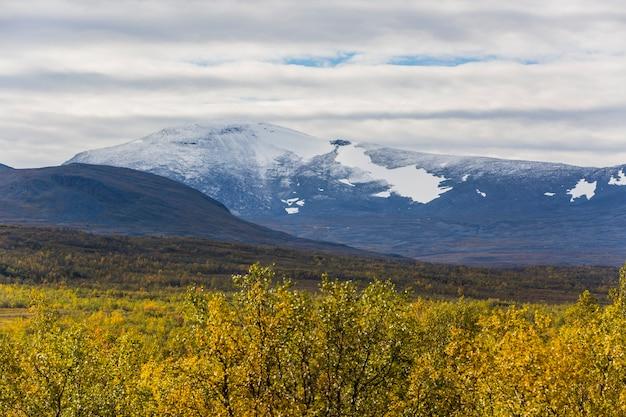 Herfst landschap in lapland, noord-zweden. europa.