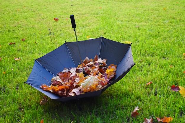 Herfst landschap met een paraplu en bladeren. warm oktober