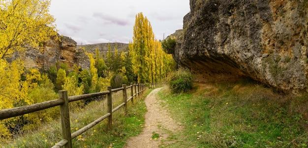 Herfst landschap met pad tussen bomen en houten hek. gevallen bladeren op de grond. spanje.