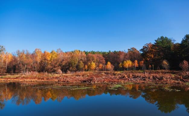 Herfst landschap met reflectie bomen in de rivier.