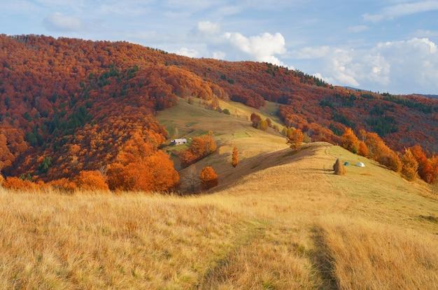 Herfst landschap op het platteland
