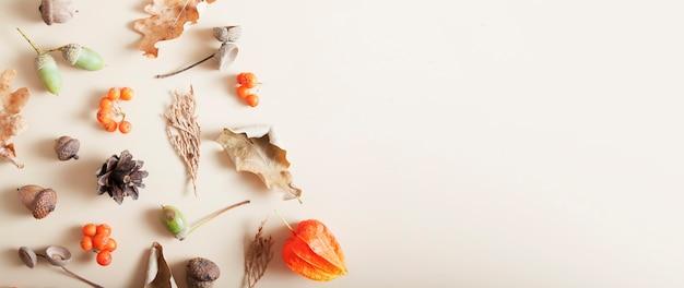 Herfst lay-out van lijsterbes, eikels, gevallen bladeren, kegels. kopieer ruimte banner formaat