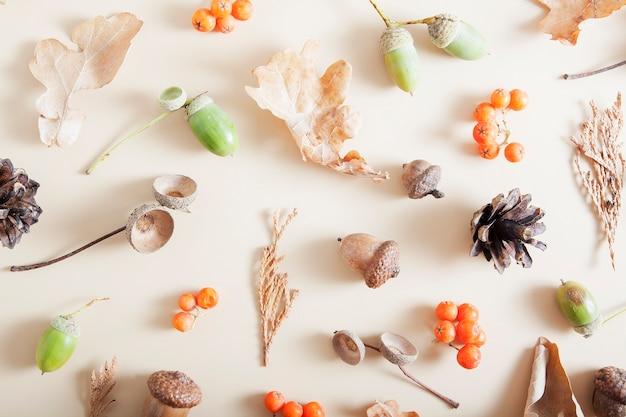 Herfst lay-out van lijsterbes, eikels, gevallen bladeren, kegels.