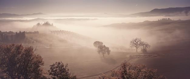 Herfst mist in vallei met olijfboomgaarden en wijngaarden, vintage landschap panorama