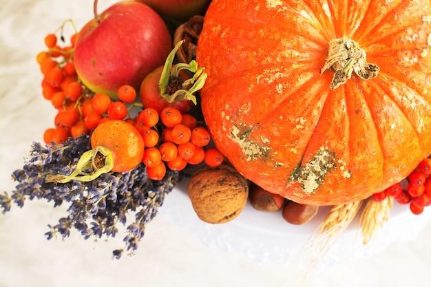 Herfst of oogst concept