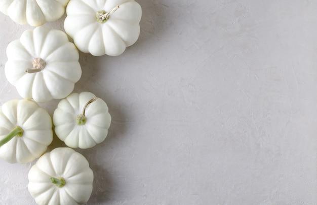 Herfst oogst. witte decoratieve pompoenen op een beige achtergrond. mocup