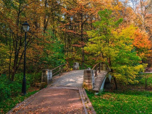 Herfst parcours in zonnig park. gevallen rode bladeren op een oude stenen brug in het park.tsaritsyno. moskou.