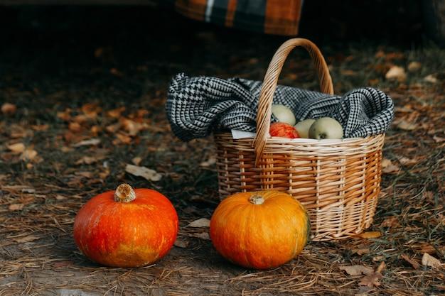 Herfst picknick. mand met appels en pompoenen.