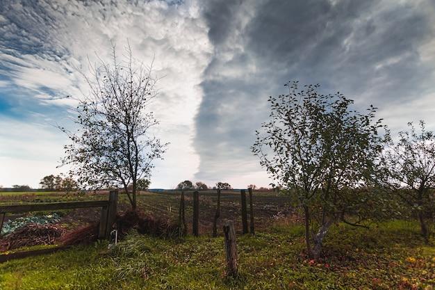 Herfst plattelandslandschap en bewolkte hemel